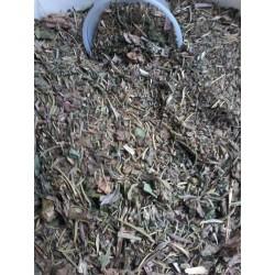 """Plant'Equine"" Drainage guttural"