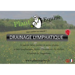 Drainage Lymphatique