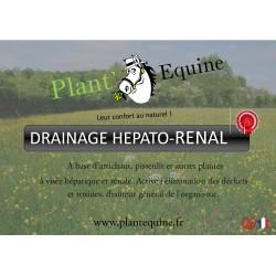 """Plant'Equine """"Drainage Hépato-Rénal"""""""
