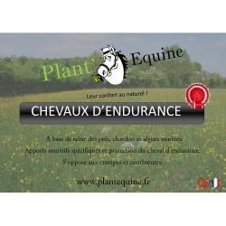 """Endurance """"Compétition"""""""