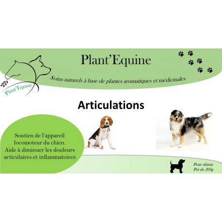 """Plant'Equine"" Chiens Articulations"