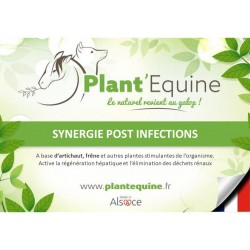 """Plant'Equine"" Post Lyme"