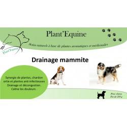 Drainage mammite