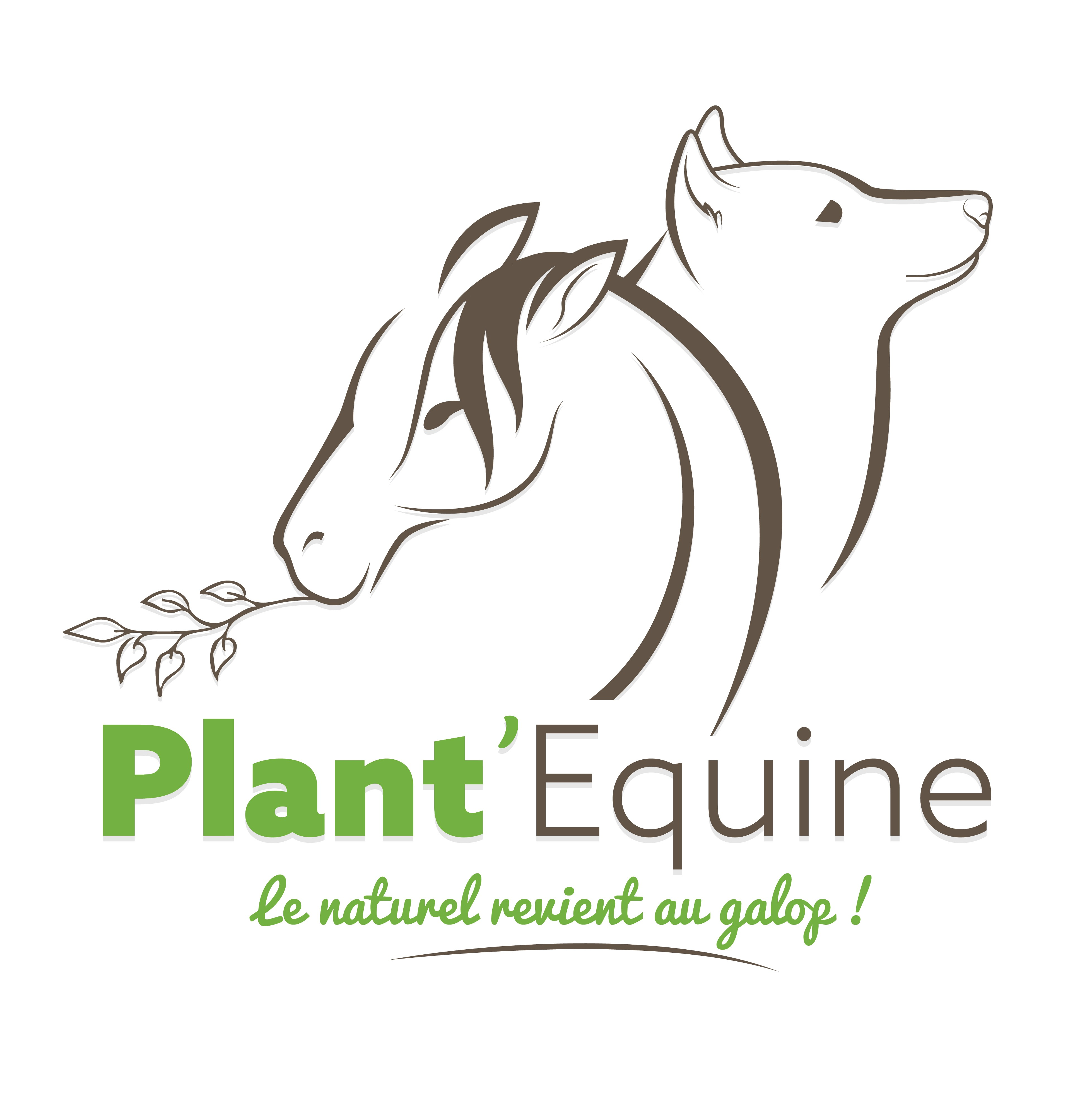 Plant'Equine